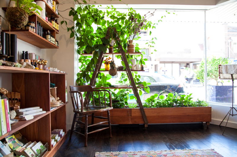 UrbanGrowers-OrchardSt-Bronte-lowres-2.jpg