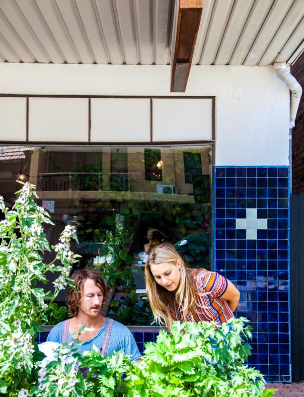 UrbanGrowers-OrchardSt-Bronte-lowres-14.jpg