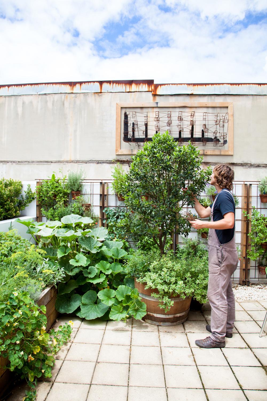 UrbanGrowers-AlexandriaResidence-49.jpg