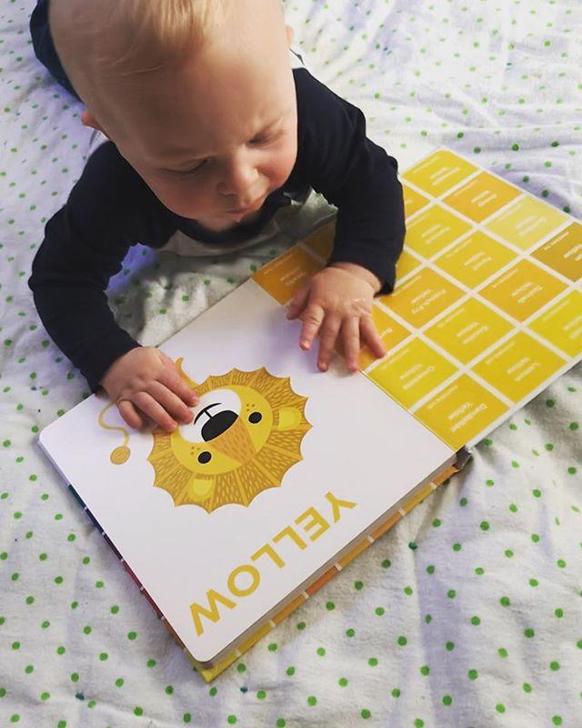 Joy is showing my sunshine boy all the subtle shades of pantone yellow.  #pantone #pantonebook #yellow #sunshineyellow #babybook #babygenius