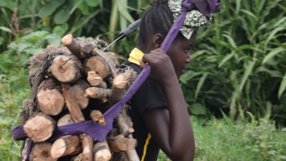Three billion people still rely on decentralized wood fuel production. (Democratic Republic of the Congo, 2014)