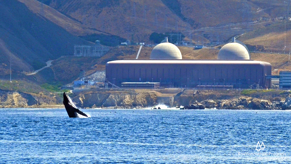 Five percent of global electricity is 60 Diablo Canyon-sized nuclear plants... (Credit: John Lindsey)