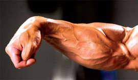 hypertrophy for climbing part 2 forearms fingers and the amended