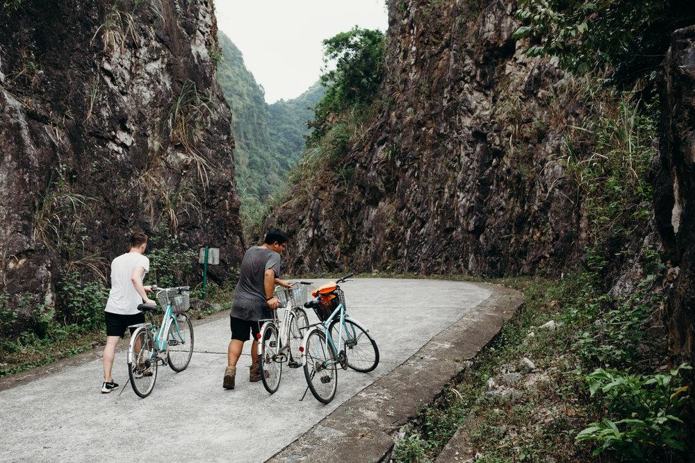 biketourcatbanationalpark.jpg