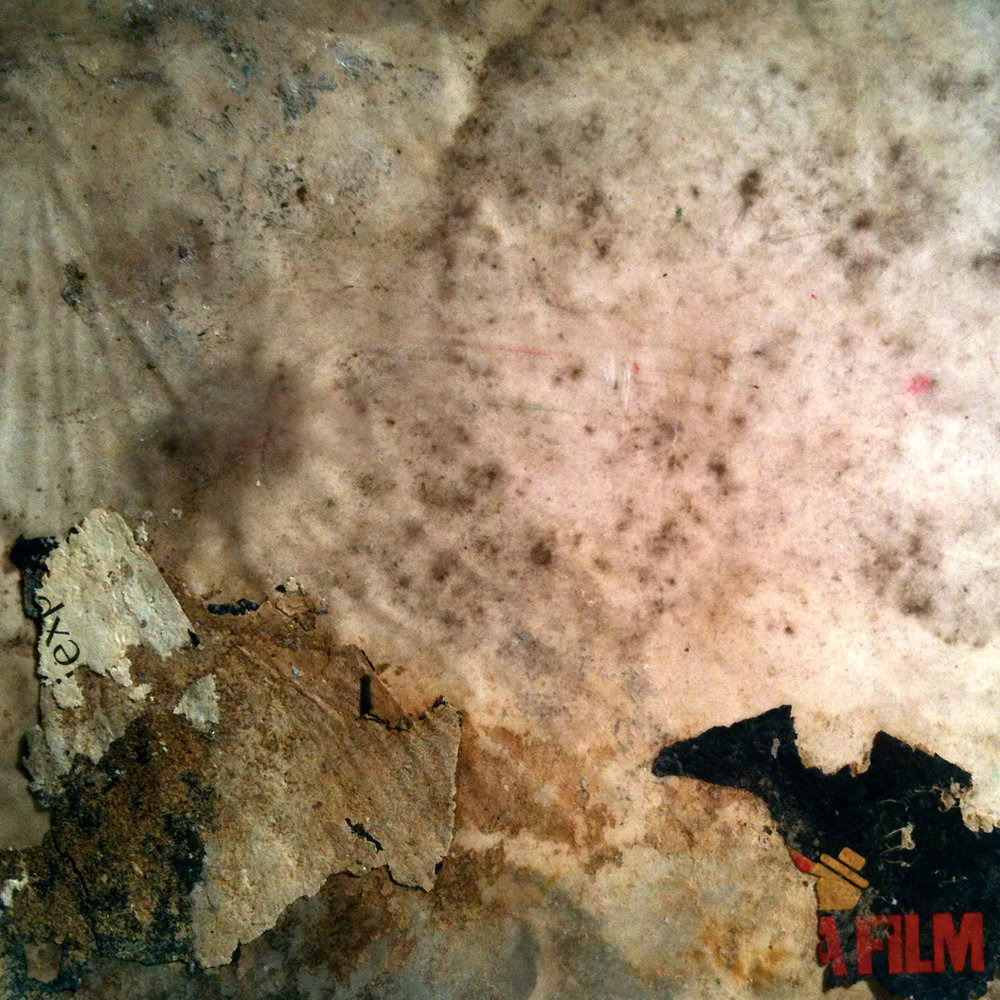 julien-baillargeon-afilm-2012-web.jpg