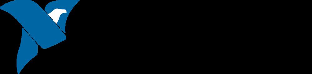 NI logo_2c.png