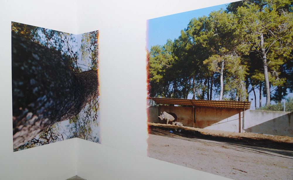Installation view, Indie Gallery