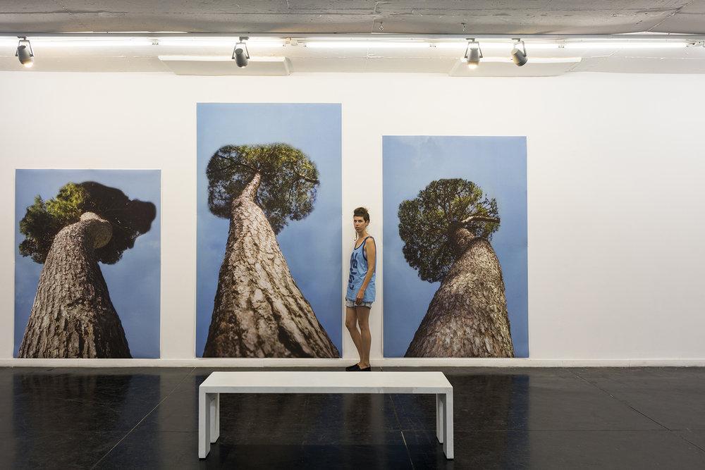 Grove  , installation view, 2017, inkjet print, 200x150 cm, 280x150 cm, 240x150 cm