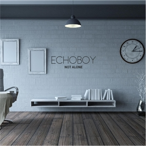 Echoboy / Not Alone  : Producer, Mixing, Editing