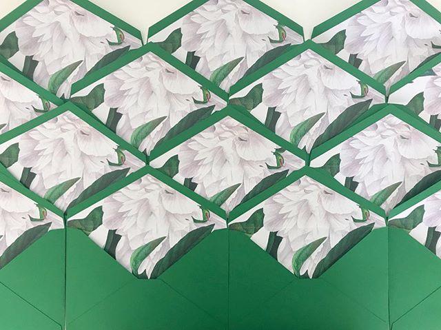 So pretty! Botanical lined envelopes. 😍 . . . . #amazonegreen #botanical #peony #linedenevelope #wedding #invitationsuite #invitationdesign #weddinginvite #weddinginvitationdesigner #rudedesign