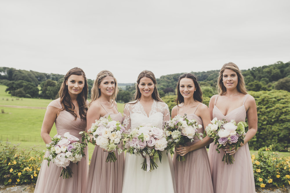 The Bride and her Bridesmaids.JPG