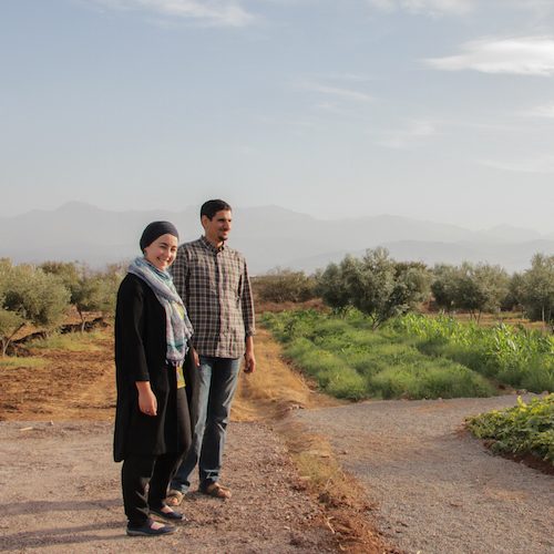 Meet the entrepreneurs creating Morocco's farm of the future  The Switchers