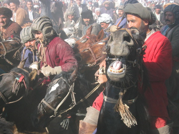 I had a very closeup seat at a Buzkashi match in the norther city of Mazar-i-Sharif