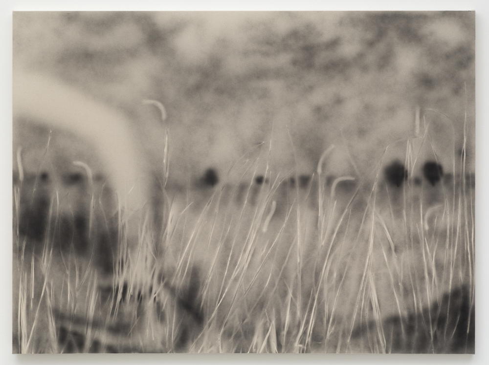 Phoebe Unwin,  Bulrush , 2015, Indian ink on acrylic sized canvas, 123 x 166 cm. Image courtesy of Wilkinson Gallery.
