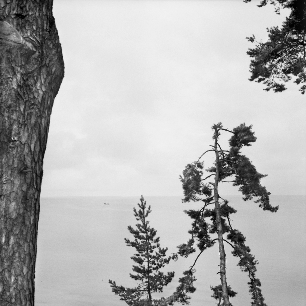 Lith8. Thomas Manns Italian View.jpg