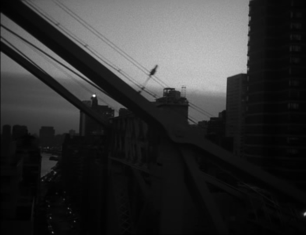Raymond Depardon,  New York, N.Y.  (1985)