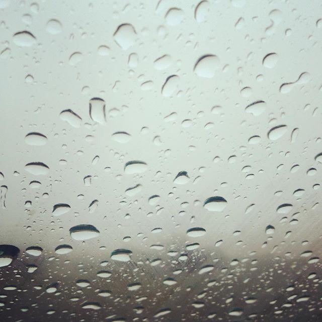 Warten auf besseres Wetter und den Probenbeginn... #figurehumaine #münchen #schlossnymphenburg #chor #denisrouger #regen #langeweile