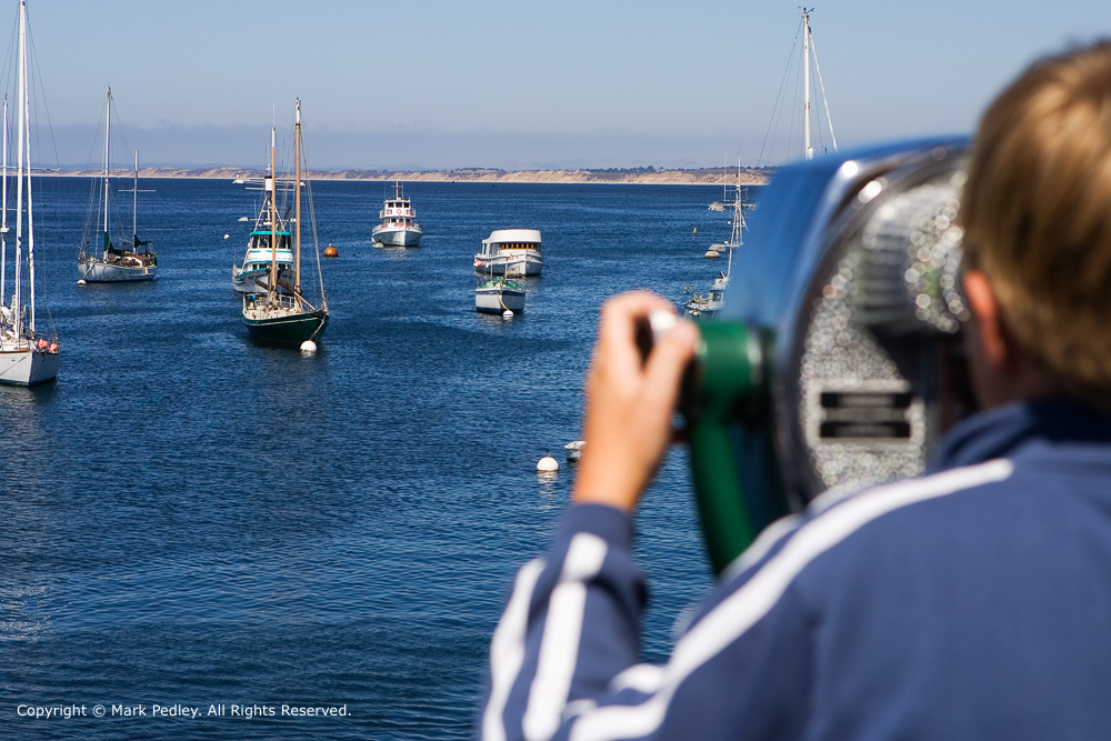Young boy observing boats, Monterey, California, USA.
