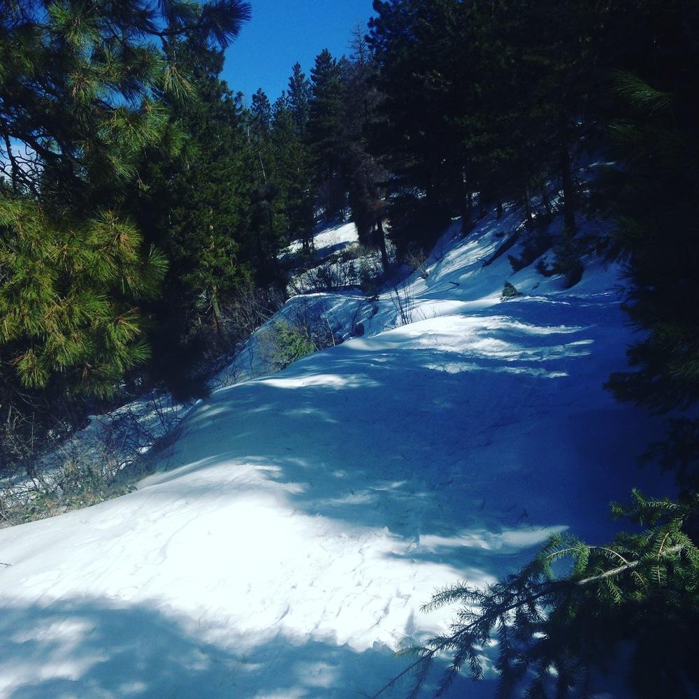 amie-longmire-bogus-basin-snow
