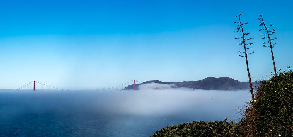 Golden Gate Bridge on a cloud carpet