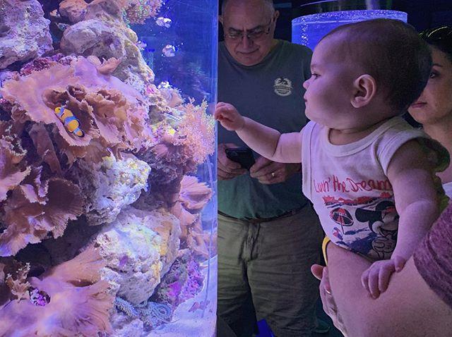 Finding Nemo #auntlife #bff #moreentertainingforusthanher