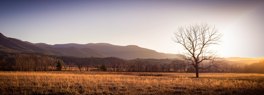 Cades Cove Smoky Mountains Tritar Adventures Instagram Tennessee Smokies.jpg