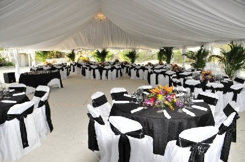 Weddings    With Economy Party & Tent Rental, your dream wedding is in reach