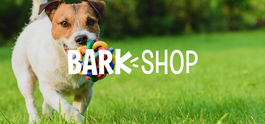 How BarkShop Creates Top Dog Email Segmentation - Klaviyo Spotlight