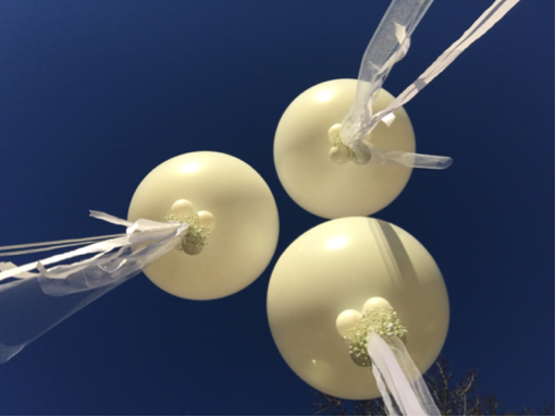 Jumbo White Balloons with Baby's Breath and Tulle Accents