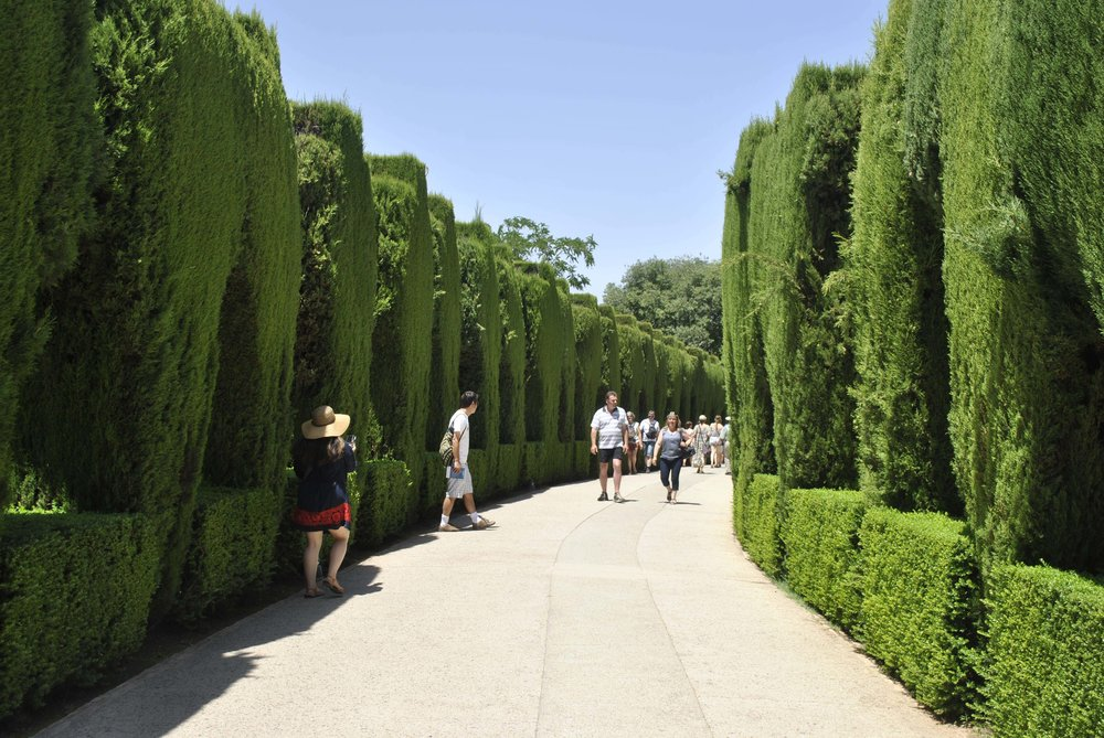 ©Detail Movement - Alhambra Walkway (near no 6 on the map)