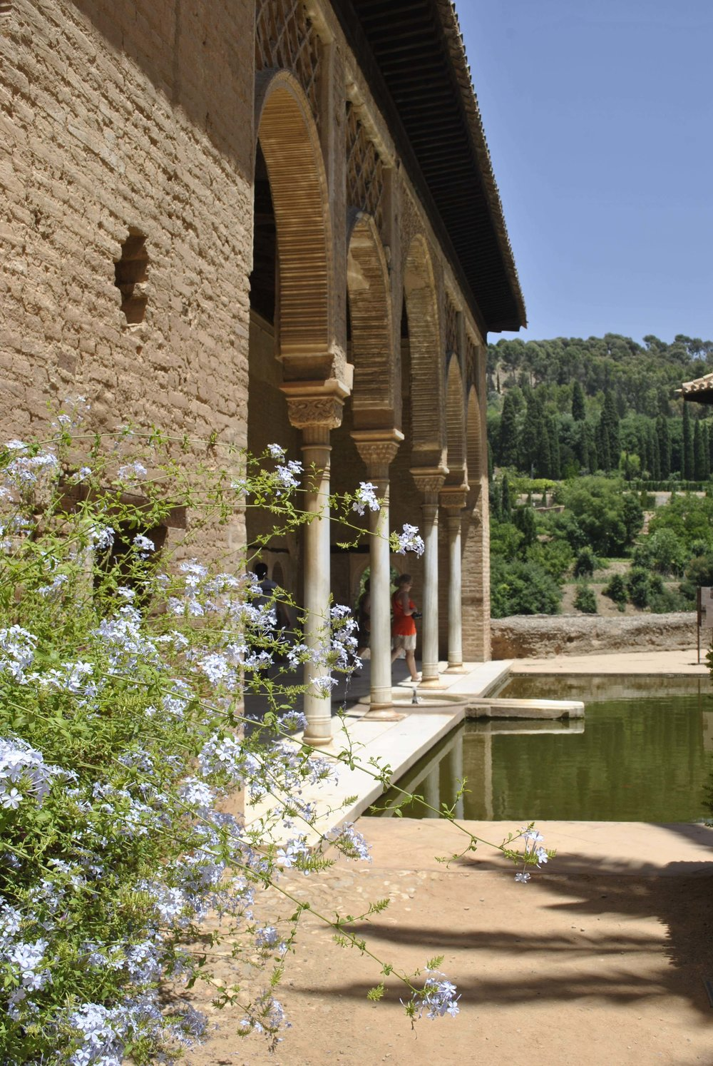 ©Detail Movement - Alhambra Partal Palace and Gardens (no 31 on the map)
