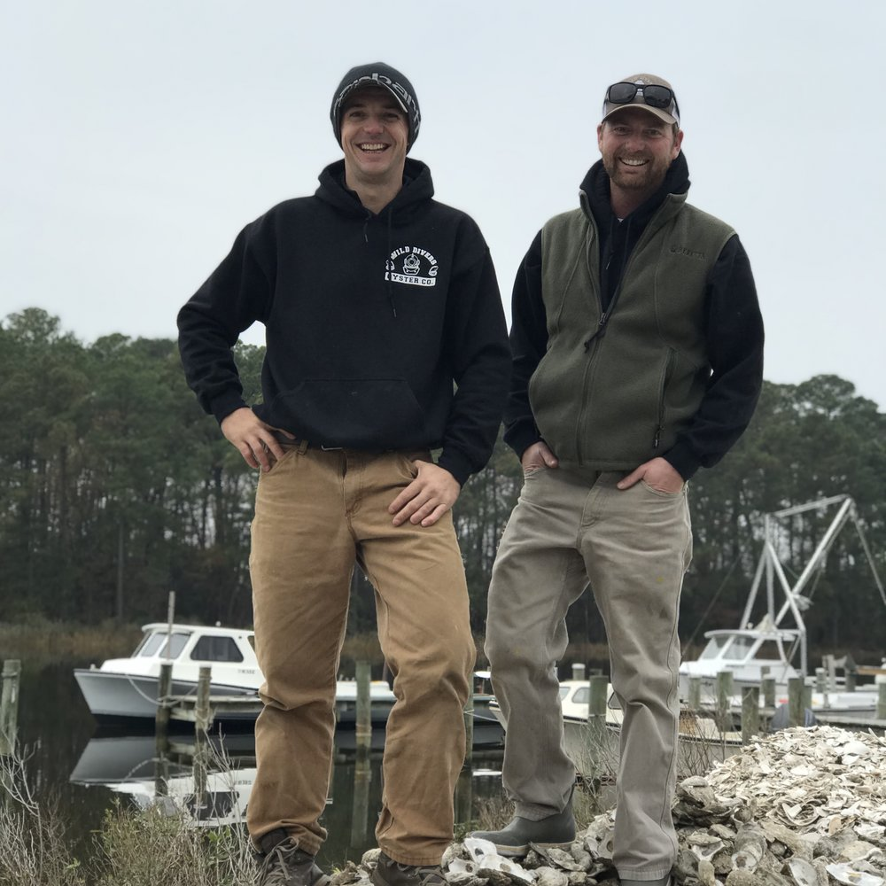 wild divers oyster co.