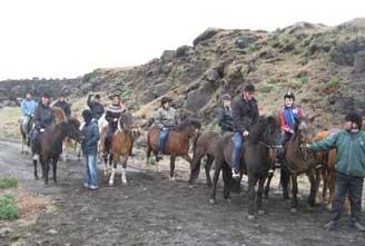 family-tour-Icelandic-horse-03.jpg