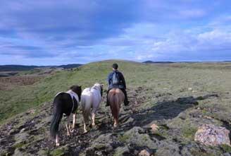 ICELAND-BLUE-LAGOON-HORSE-RIDING-HOT-SPRING-RIDE-02.jpg