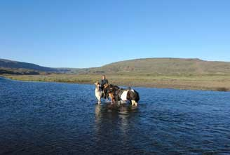 Icelandic-horse-rideingGOLDEN-CIRCLE-COMBINATION-03.jpg