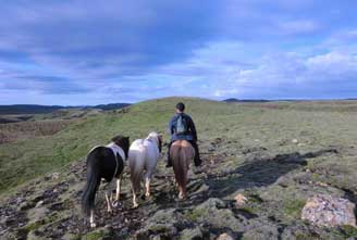 a-DAY-AT-ICELANDIC-FARM-02.jpg
