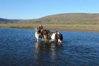a-DAY-AT-ICELANDIC-FARM-03.jpg
