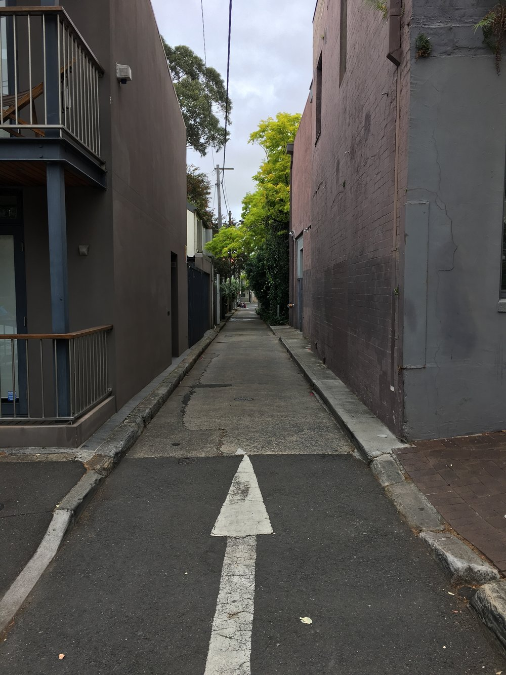One of the lanes in Surry Hills between Crown and Bourke St