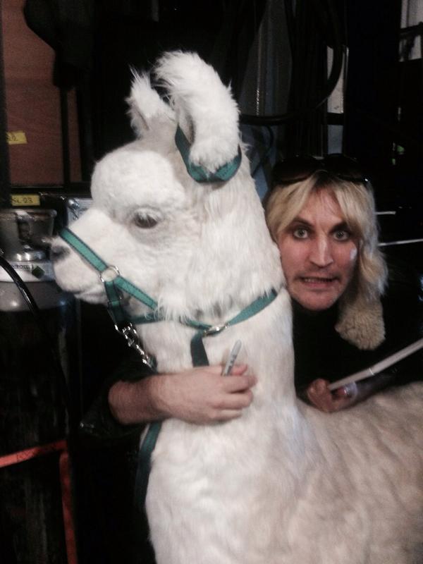 llama on wheels prop