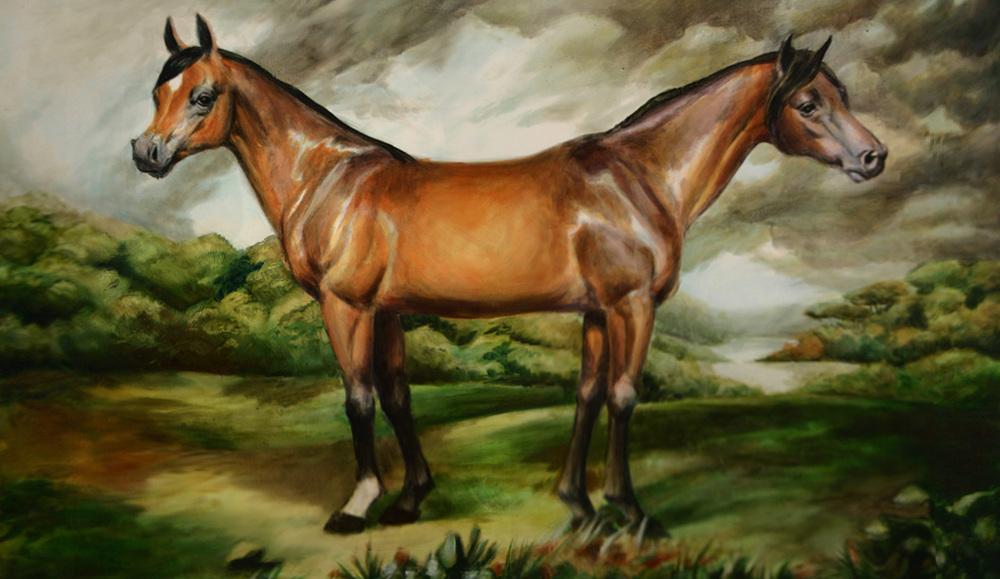 NAP double horse.jpg