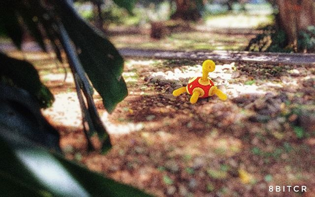Pokemon 213: Shuckle permanece escondido bajo las rocas en silencio y, cuando se pone a comer las bayas que almacena, se encierra en el caparazón. Las bayas se mezclan con sus fluidos corporales y originan zumo. #pokemongo  #pokemongoar