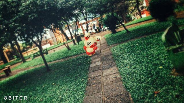 Caminando en línea recta 😜 🙌🏻 Ya consiguieron al nuevo Spinda?  #PokemonGO