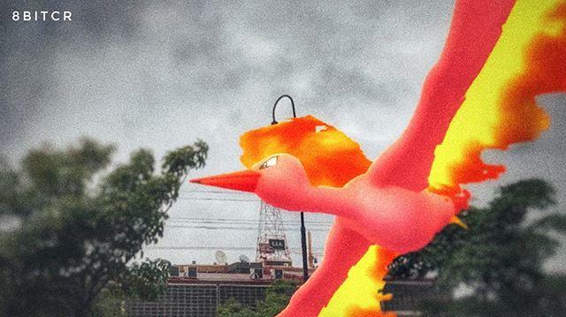Un legendario pájaro Pokémon. Cuando aletea sus flamígeras alas, la oscura noche se torna roja. #PokemonGO #PokemonGOAR