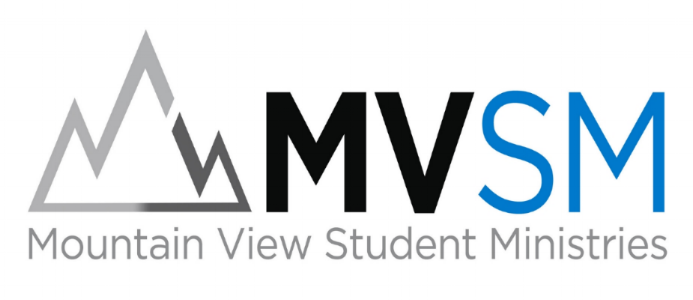 mvsm logo.jpg