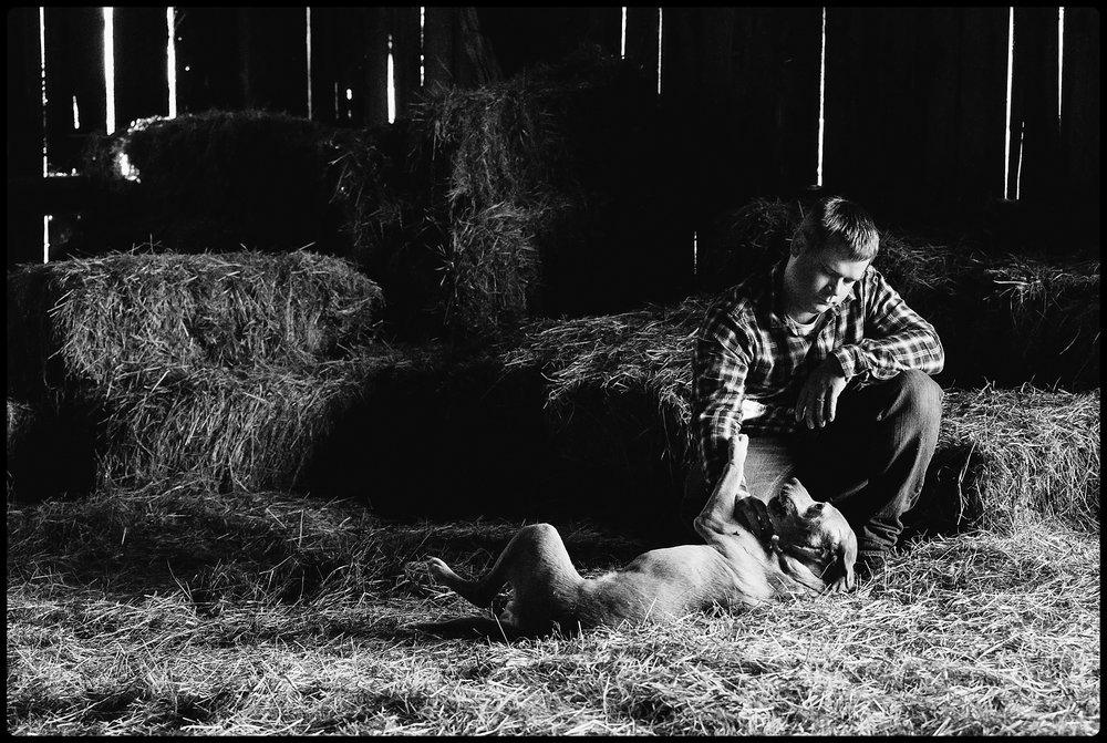 Man rubs dogs tummy in a barn.