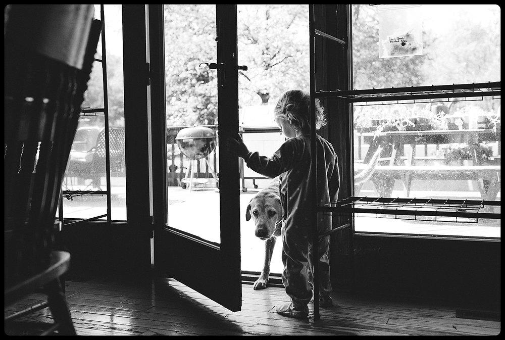 Little girl letting dog inside the home.
