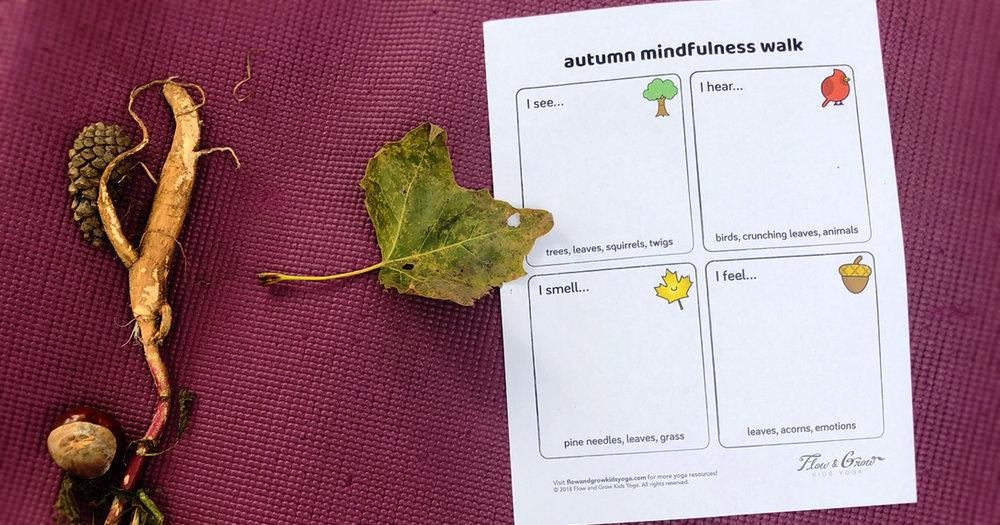 blog-autumnmindfulnesswalk.jpg
