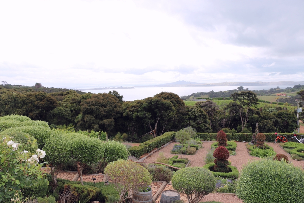 view from mud brick winery on waiheke island, New zealand