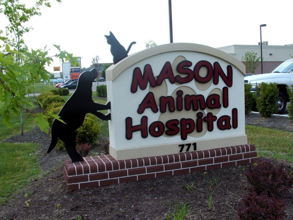 Mason Animal.jpg