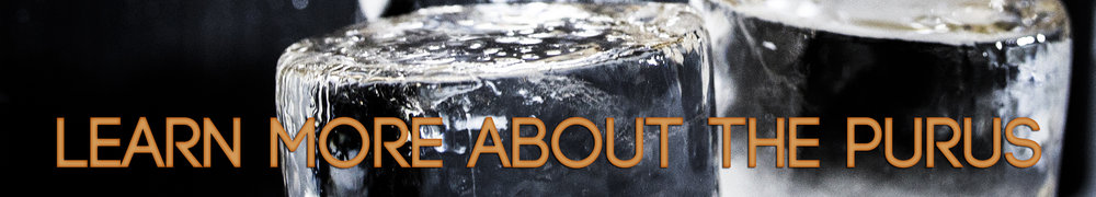 Learn More Purus.jpg